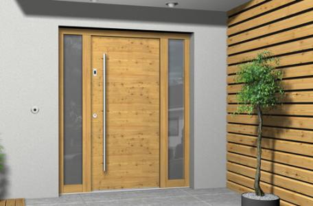 Primer Lesena Vhodna Vrata